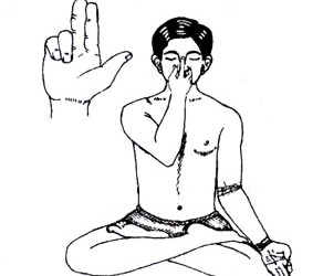 Para compreender o prāṇāyāma